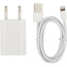 OEM Apple Lightning Cable & Wall Adapter